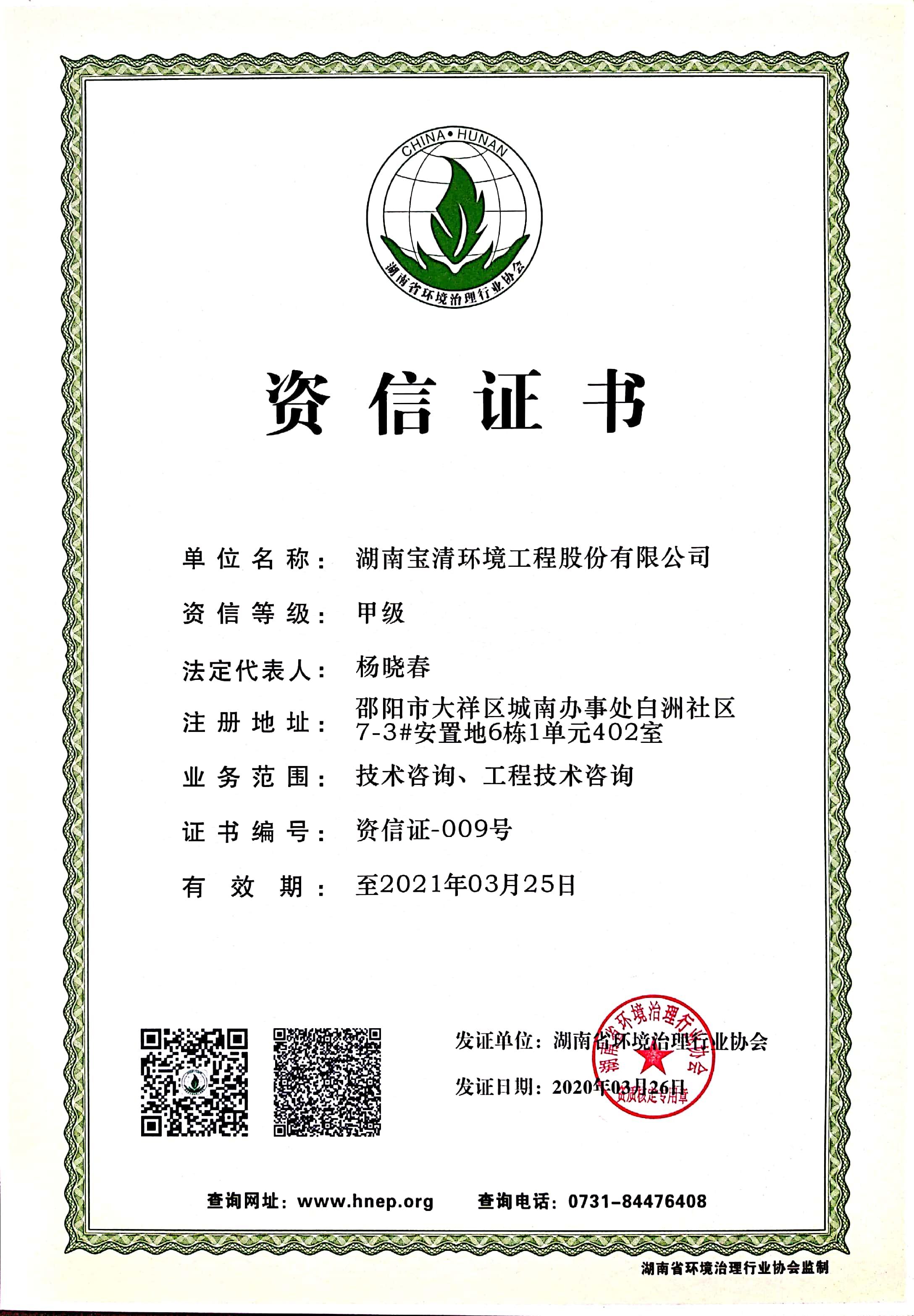 技术咨询和工程咨询 甲级资信证书